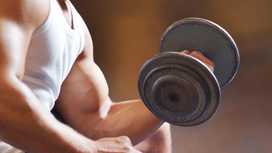программа набора мышечной массы