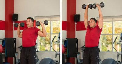Упражнения для спортзала: комплекс упражнений, пошаговая инструкция их выполнения, расписание программы тренировок, расчет нагрузок и необходимое спортивное оборудование