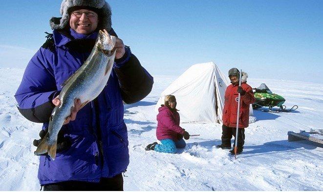 Северная морская рыба
