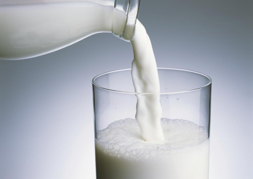 Польза обычного молока