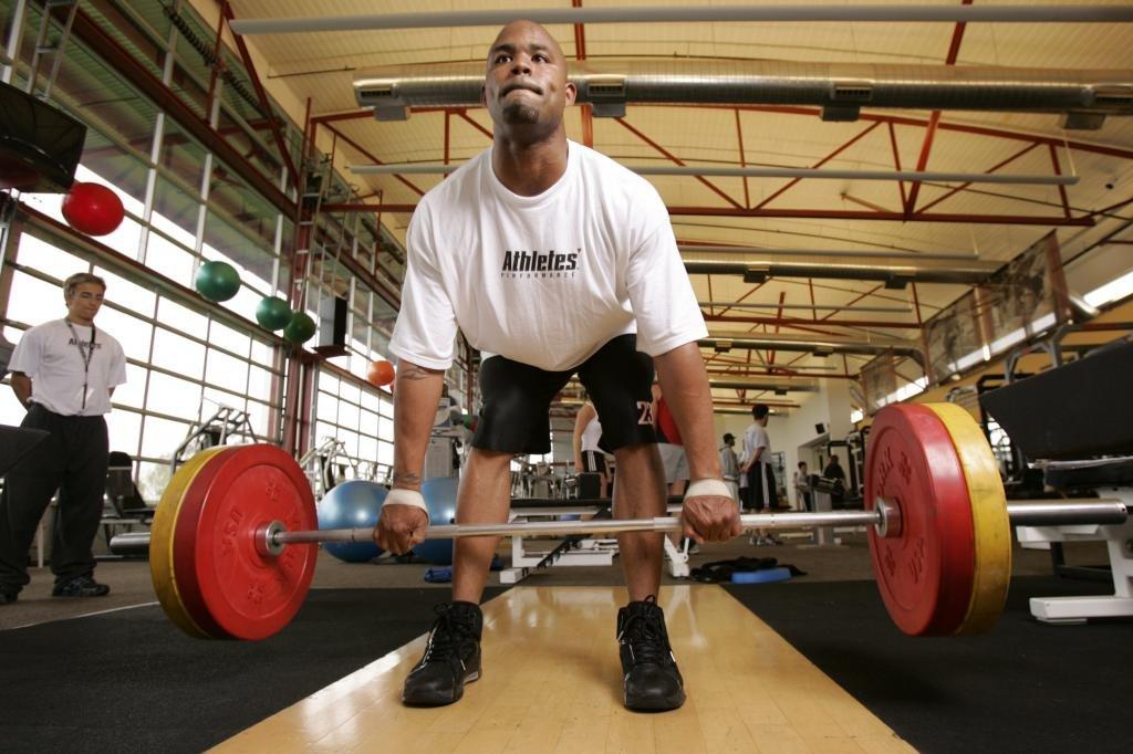сила мышц