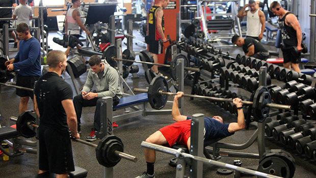 группы мышц для тренировок