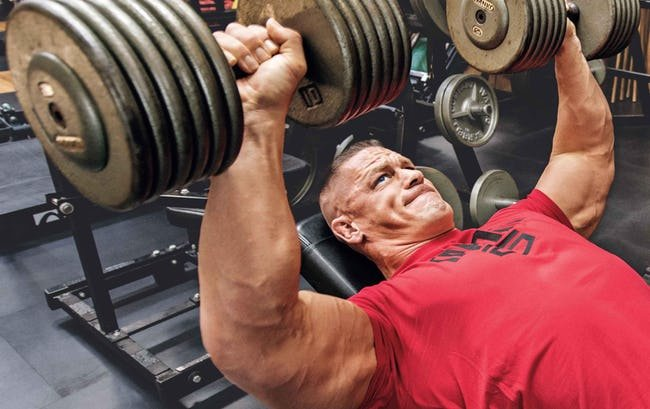 какие группы мышц