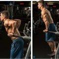 Отжимания на брусьях: виды, техника выполнения, какие мышцы работают?