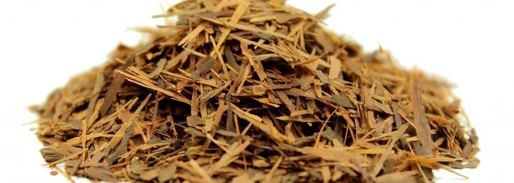 полезные свойства коры муравьиного дерева