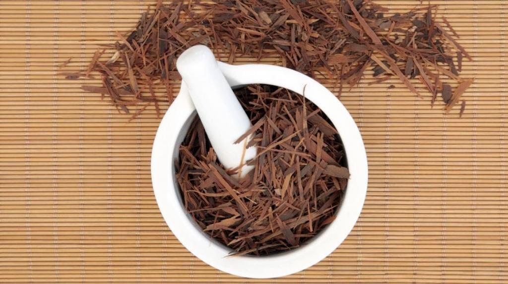 применение коры муравьиного дерева