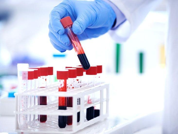 Исследование протеина учеными
