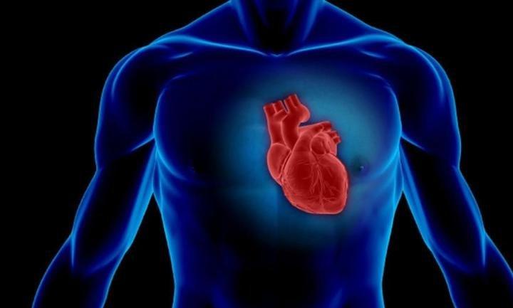 Влияние стероидов на сердце