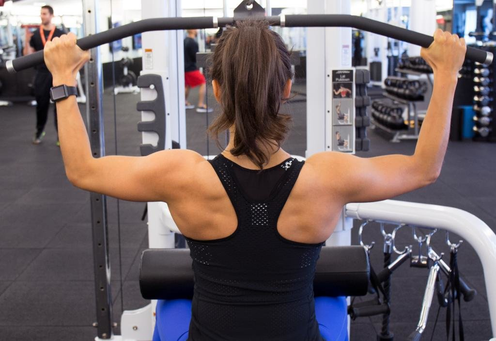 для мышц спины