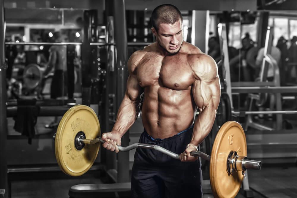 как прокачать мышцы рук