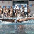 Техника плавания брассом: советы и рекомендации по правильному плаванию