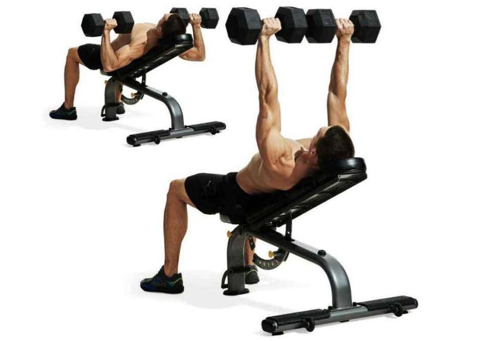 жим гантелей лежа какие мышцы работают