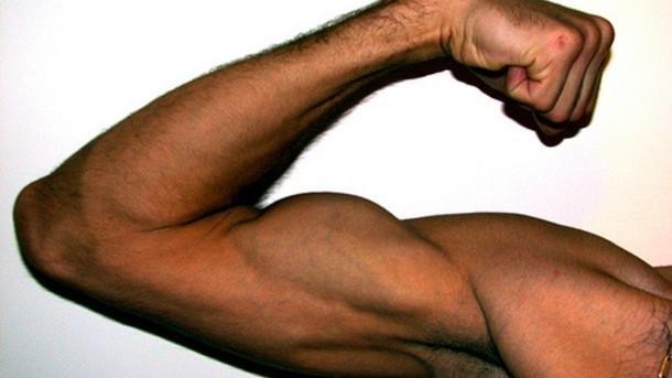 какие витамины нужны для роста мышц