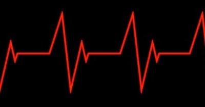 Пульс для сжигания жира: нормативные показатели, порядок расчета, советы тренеров