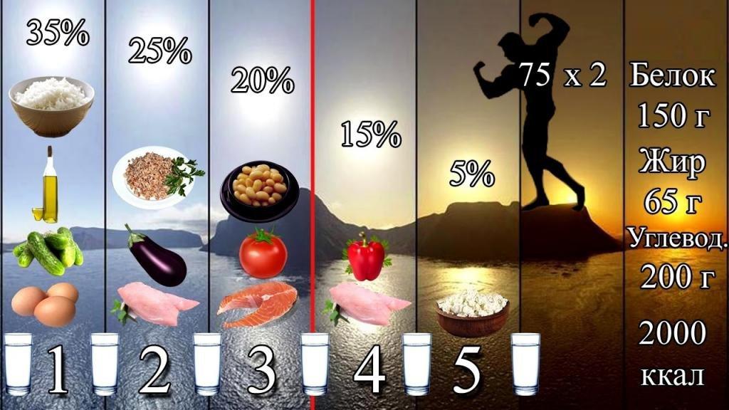 Тренировки и питание для сжигания жира