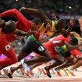 Для чего спортсмену нужны углеводы и в каком количестве? Углеводы: список продуктов