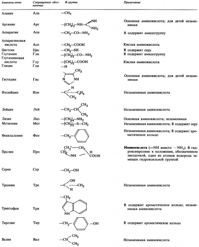 Таблица 20 аминокислот