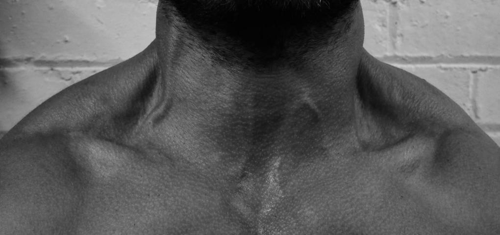 как накачать шею упражнения
