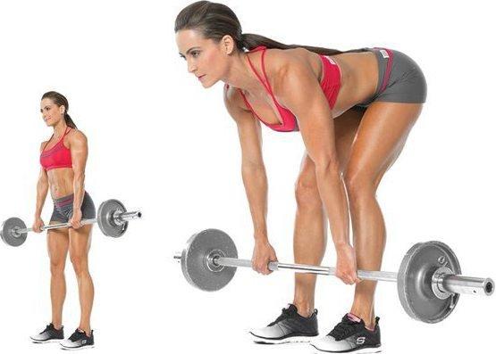 комплексные упражнения на спину со штангой