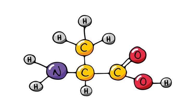 Аминокислотные комплексы