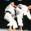 ❶ Как научиться драться каратэ