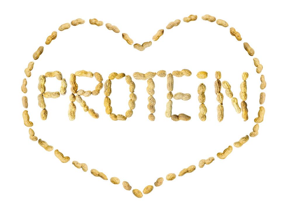 протеин польза